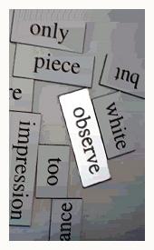 observe.jpg