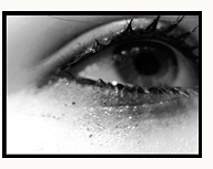cry_tears.jpg